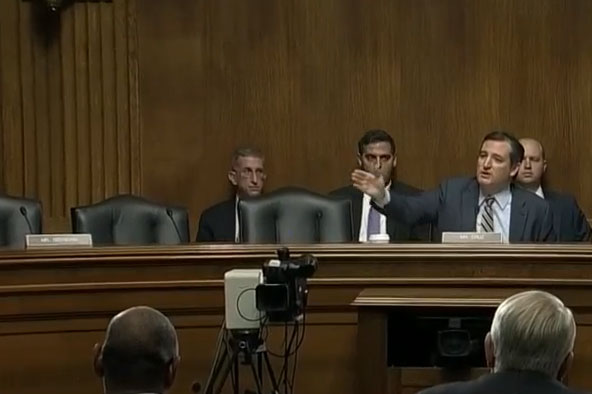 Ted Cruz Addresses Civil Rights and Policing Practices Hearing